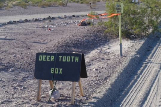 "This ""deer tooth box"" and sign were at the entrance to the bad road to Queen Canyon. What's up with that????"