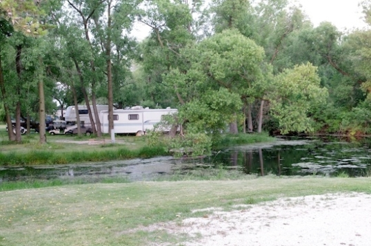 There are plenty of small ponds throughout the campsite, especially in the seasonal area.