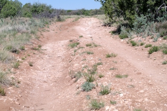 Trails like this are a no-brainer for cars, vans, and truck campers. They're even do-able for many other types of small and mid-size rigs. But, not mine. I'd ground out and bend my dropped tube axles, and drag the tail. A man has to know his limitations.