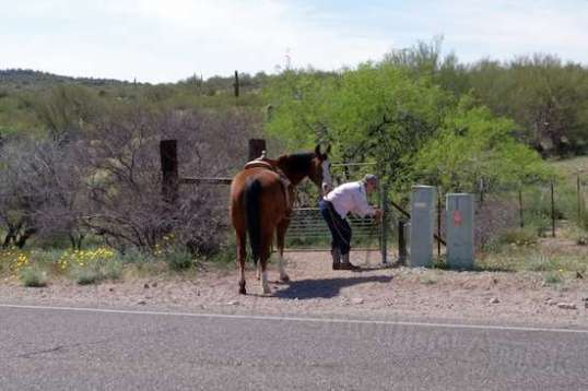 Here's one woman just returning from a ride on a Tuesday afternoon. Her horse was deeply suspicious of my bicycle (as wild burros are) so I laid it down on the ground until they passed. The woman told me that she'd seen some cactus beginning to bloom out there.