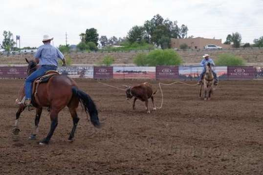 Once a steer is too large for one man to handle, team roping comes into play.