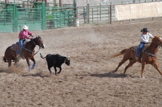 Notice that the rider on the left has thrown his rope while the steer's rear feet are on the ground, and the very small size of the loop! No way, right?