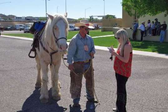 The town's newspaper reporter quickly zeroed in on the fuzzy horse's owner for an interview.