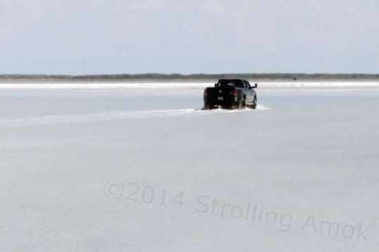 A pickup truck wades out toward the dry part of the salt flats used as the race course.