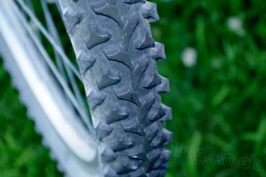 The Raleigh's 20-year-old tires are now more grey than black, but have otherwise aged well and are very good all-'round desert tires.