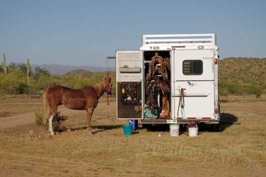 I didn't look to see the stall setup, but nearly all horse trailers include some sort of tack room where all the gear can be stored properly. Saddle weight can get impressive, so you won't see any setups that don't let you get up close and personal.