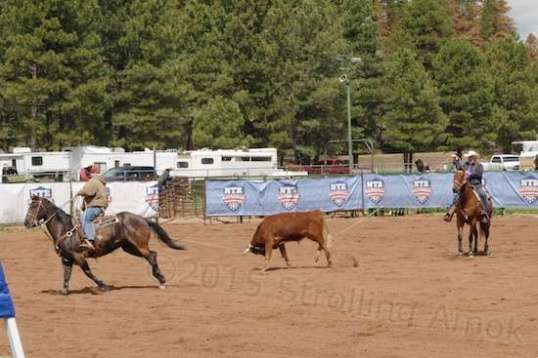 Time penalties exist for leaving the gate early or roping only one of the steer's rear legs.