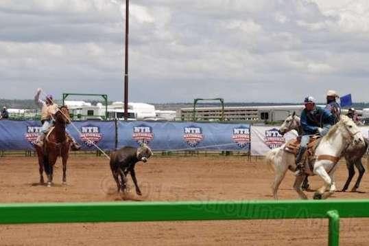They approached their roping with visible intensity, and seemed able to make opportunities instead of waiting for the right time. It was apparent that they had plenty of experience under their belts.