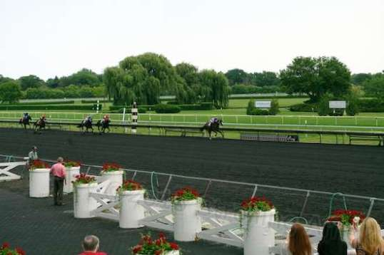 The finish of one race. The horses eventually return through this area, and are commonly hosed off to cool them a bit on such a hot day. The winning horse is posed in this area for pictures, with owner(s) andcrew.