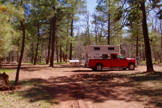 My chosen campsite has three approaches, and is big enough for several large rigs. Sun or shade, your choice.