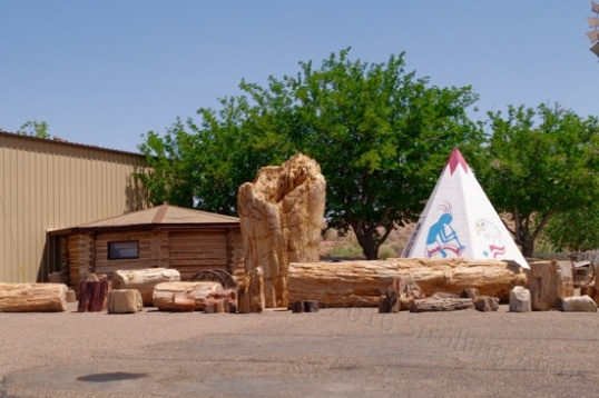 I pulled into the Geronimo store, since it had many teepees distributed about, and The World's Largest Petrified Wood.