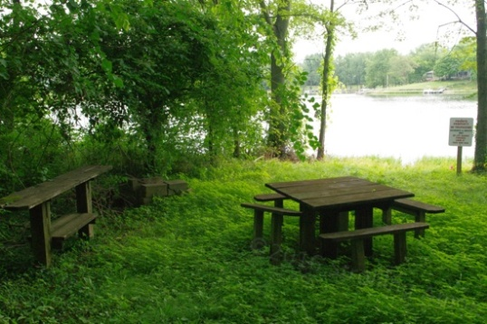 "The whole area is part of a private housing development, and this picnic table and ""buffet"" table make me wonder just how long they've been here. It's an inviting little spot."