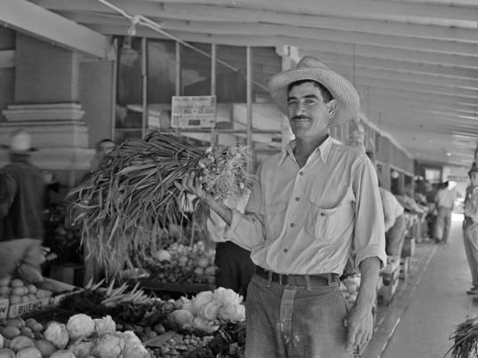 A Brownsville, Texas produce farmer in 1943. Photo by Arthur Rothstein.