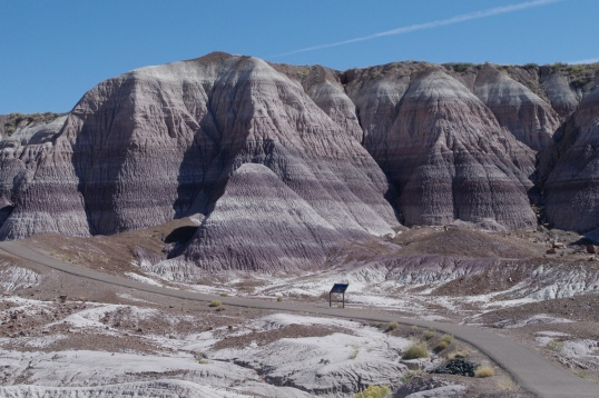A walking path through the Blue Mesa at the National Petrified Forest.